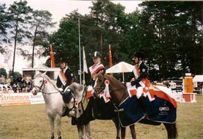 Pony-Springreiten in Berlin-Brandenburg